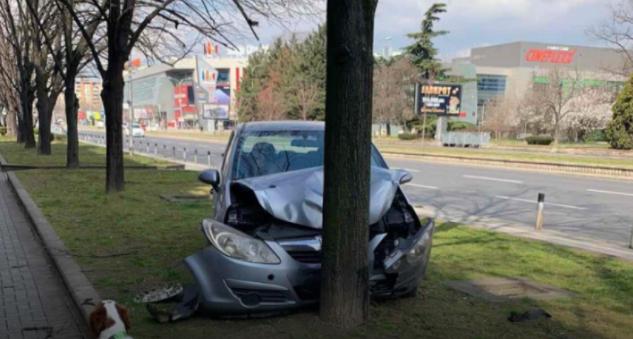 """Автомобил удри во дрво кај """"Сити Мол"""""""