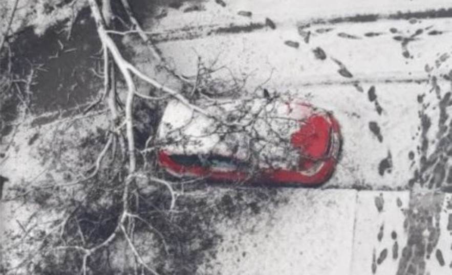 (ФОТО) Дрво се сруши врз автомобил во Кисела Вода