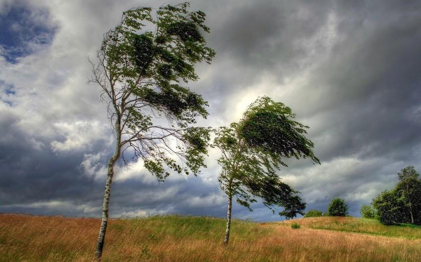 Променливо облачно со засилен северозападен ветер
