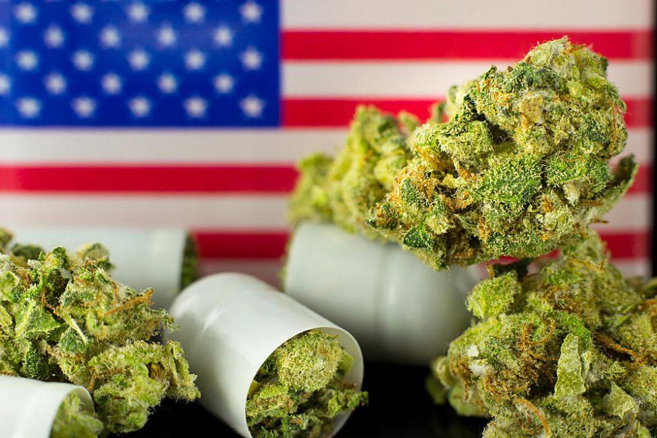 Њујорк го изгласа Законот  за легализација на марихуаната за рекреативна употреба
