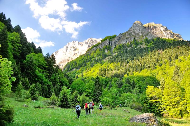 Дел од Шар Планина под привремена заштита до донесување на Законот за национален парк