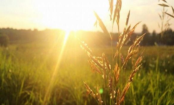 Сончево време со слаб ветер, од утре нов влажен бран со обилни врнежи
