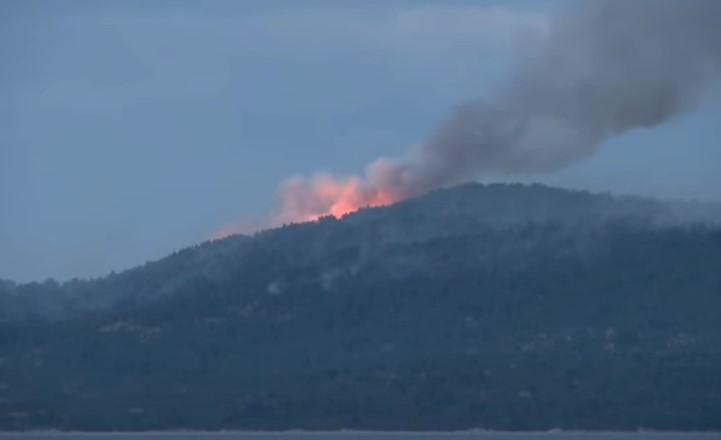(ВИДЕО) Избувна пожар на Света Гора