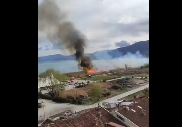 (ВИДЕО) Повторно се пали трска кај Струга