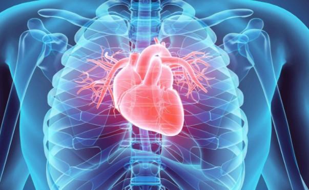 Кардиоваскуларните болести биле поголема причина за смртност отколку коронавирусот во САД