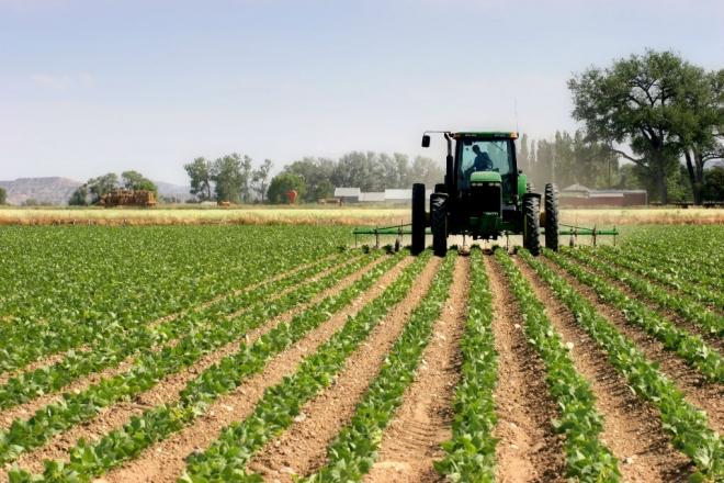 Продолжен рокот за пријавување на субвенции за земјоделците