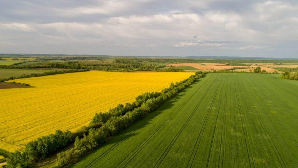 ВМРО-ДПМНЕ ќе го блокира законот за продажба на земјоделското земјиште
