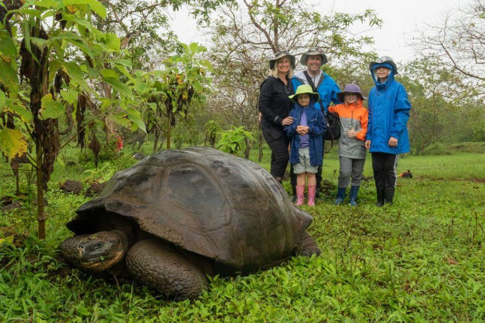 """""""Изумрена"""" желка од Галапагос пронајдена жива по 115 години"""