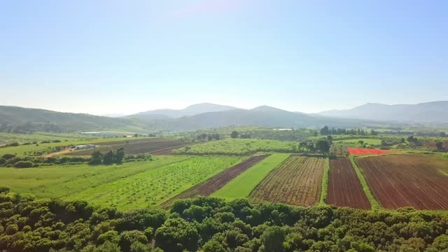 Арсовски: Распродажбата на државното земјоделско земјиште е системско уништување и распродавање на Македонија
