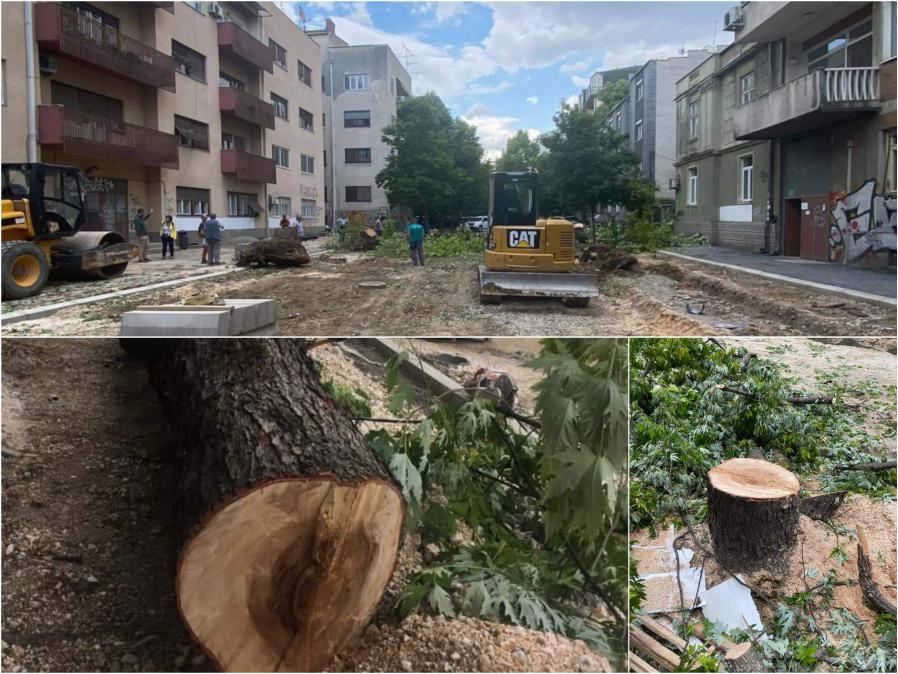 """Општина Центар уверува дека исечените дрва на """"Орце Николов"""" ќе бидат заменети со нови"""