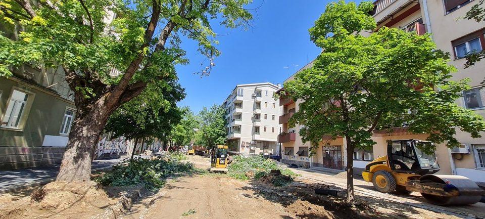 (ФОТО+ВИДЕО) Масакр на цел дрворед во Дебар Маало!
