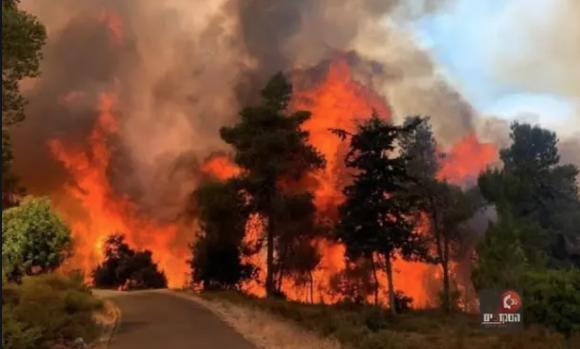 (ВИДЕО) Избувна голем пожар во близина на Ерусалим, населението се евакуира