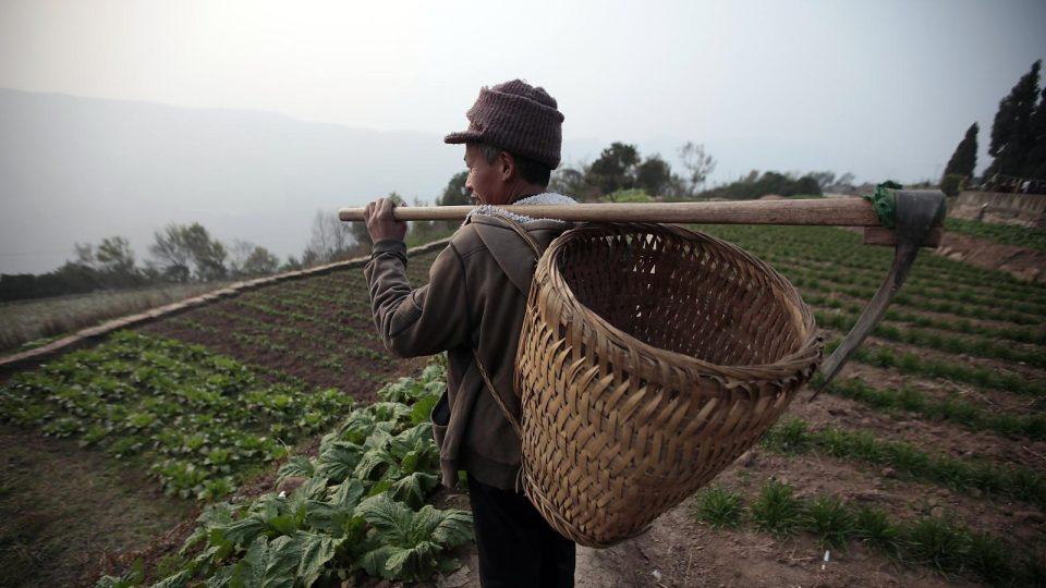 Кинезите ги напуштаат градовите и се враќаат во селата