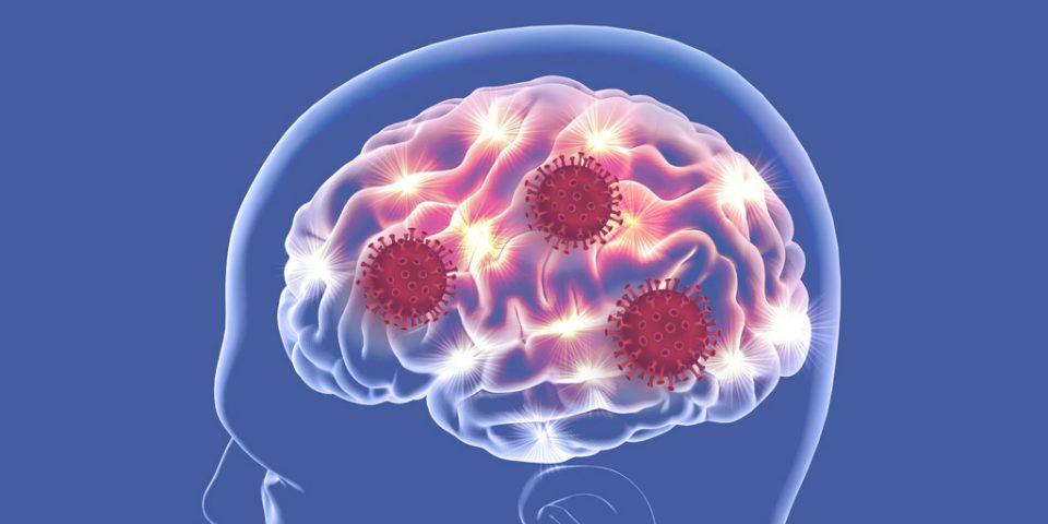 Ковидот предизвикува отежнато работење и оштетување на мозокот