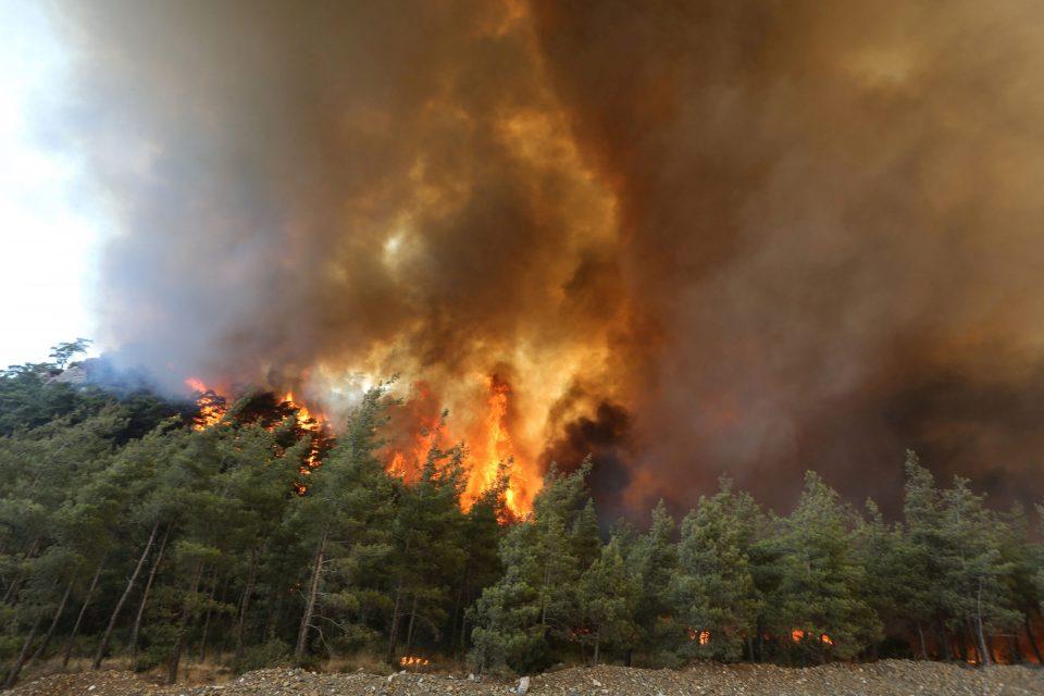 (ВИДЕО) Шумски пожар беснее во третиот по големина град во Грција
