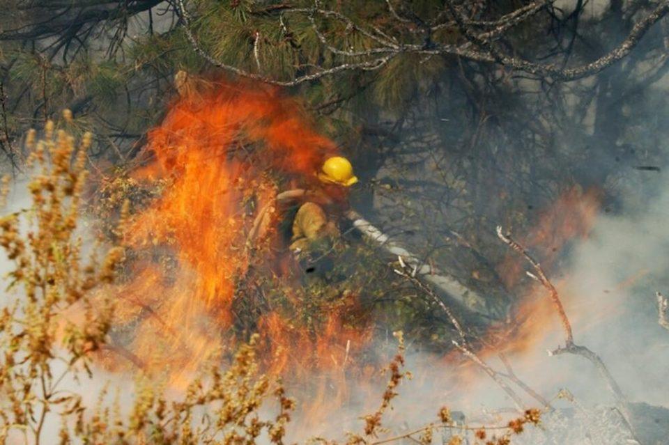 Изгаснат пожарот кај село Белица, Бродско