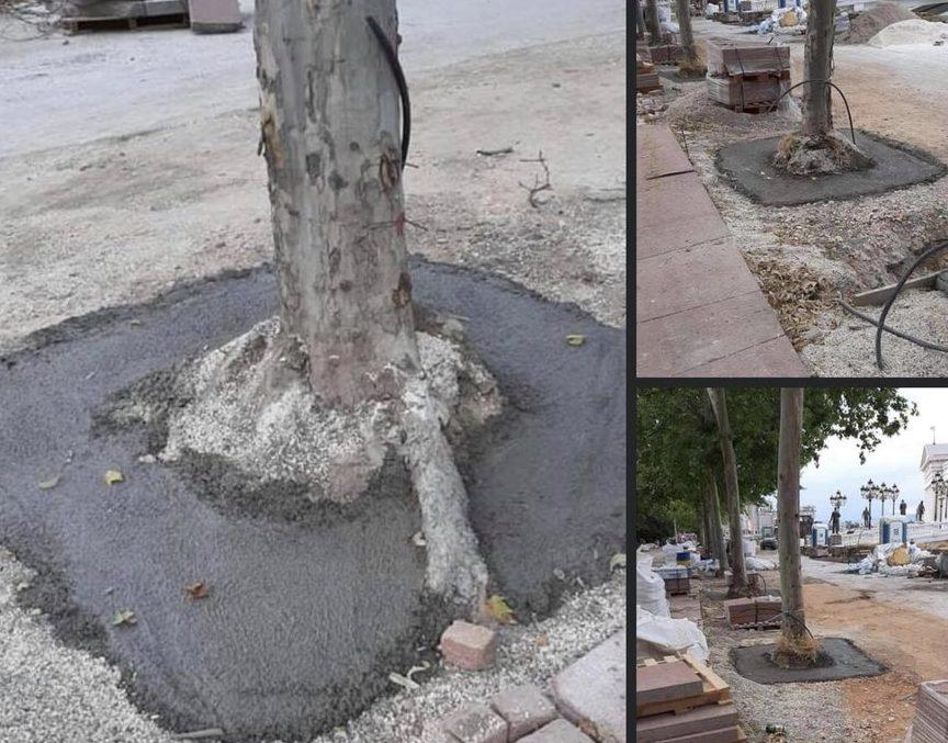 """После масакарот на дрва на """"Орце Николов"""", сега ги бетонираат на Кејот """"13 Ноември"""""""