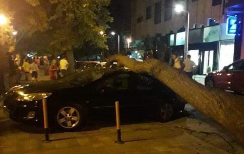 (ФОТО) Падна дрво во Дебар Маало – повредено едно дете и оштетен автомобил