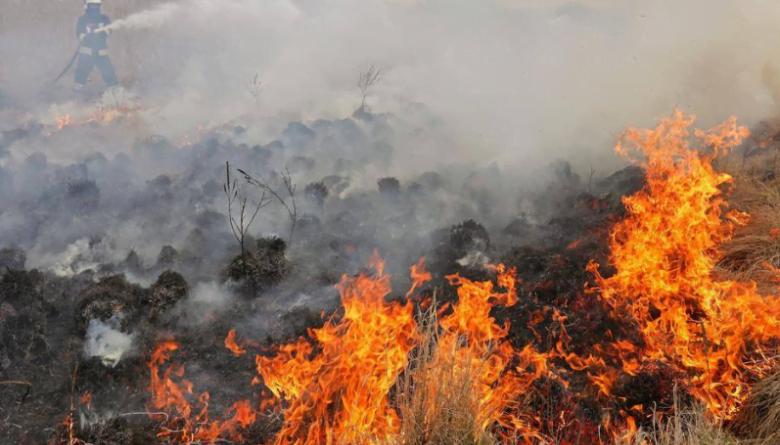 Во Италија активни 240 пожари