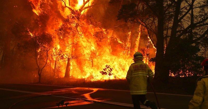 (ВИДЕО) Пеколна ноќ во Сардинија: Огнената стихија голта се пред себе