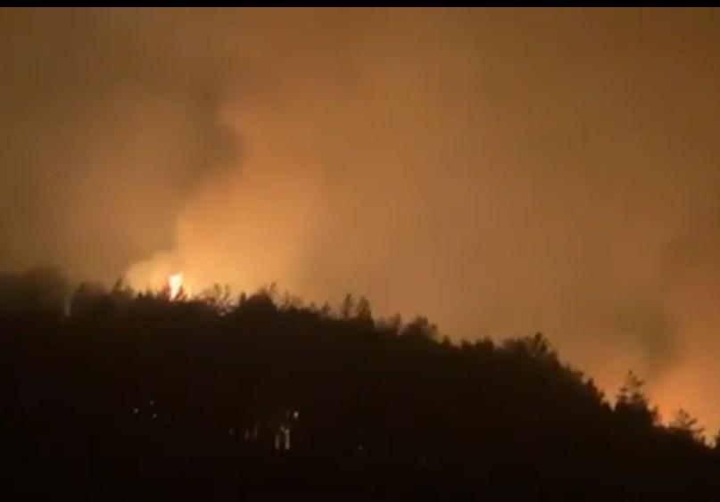 ЦУК: Состојба со пожарите до 19 часот