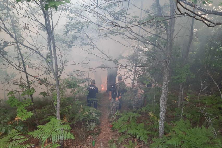 Армијата продолжува да се справува пожарите на терен и од воздух