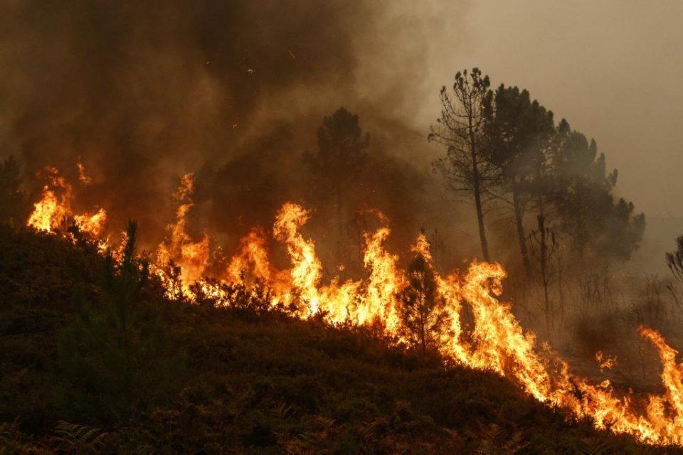 Алармантна ситуацијата со пожарите, се бара прогласување кризна состојба во државата