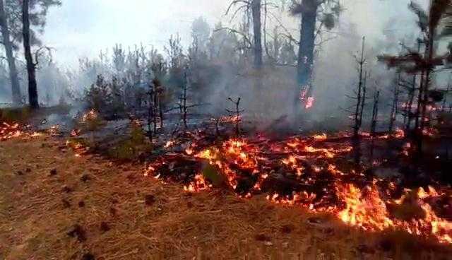 Жител на Лева Река го предизвикал пожарот во селото, а Албанец во Пожаране