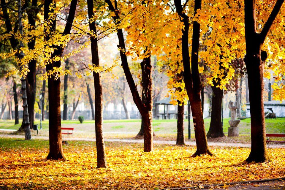 Денеска почнува есента