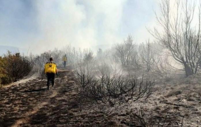 Пожар над струмичкото село Вељуса, 14 пожарникари на терен