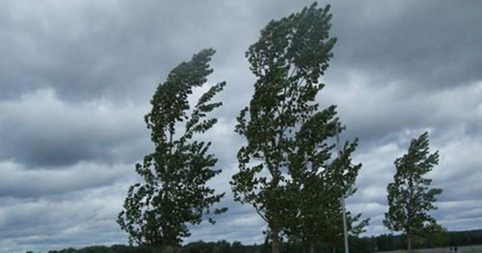 Денеска и утре ветровито со минимални температури и до нула степени